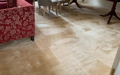 Carpet Cleaning in Cheltenham