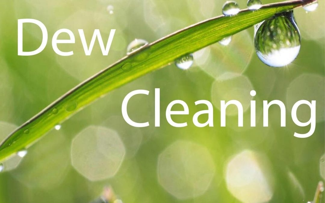 Professional eco-friendly cleaning in Cheltenham